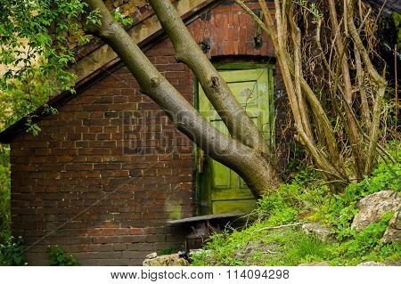 Locked door  by tree