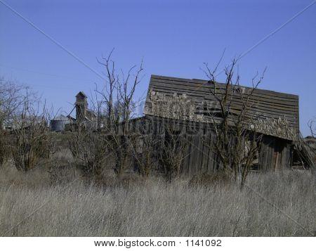 Homestead abandonado