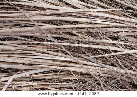 Background Dry Straw Horizontal