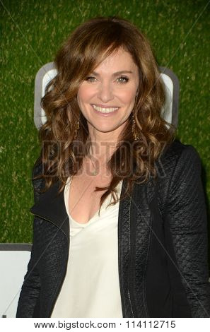 LOS ANGELES - JAN 9:  Amy Brenneman at the The CW World Dog Awards at the Barker Hanger on January 9, 2016 in Santa Monica, CA