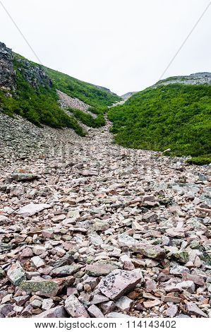Jagged rubble of rocks in landslide channel descending between bushes from mountain under white sky at base of Gros Morne Mountain Gros Morne National Park Newfoundland Canada. poster