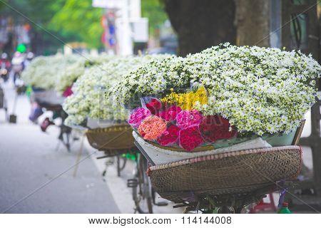 White daisy flower vendor in a street in Hanoi