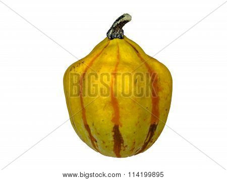 Pumpkin 6 isolated