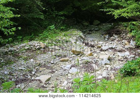 Mountainous terrain, streams of spring and vegetation, stone bases close-up