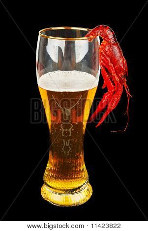 poster of Craw-fish and light ale Beer isolated o the black background.