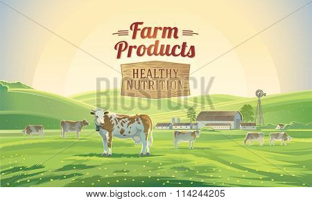Rural landscape with cows and farm. Farmland.