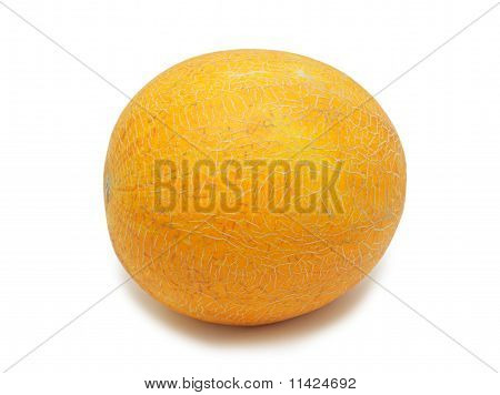 Yellow Melon, Isolated