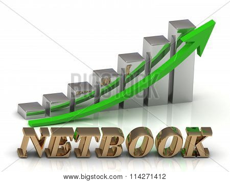 Netbook- Inscription Of Gold Letters And Graphic Growth