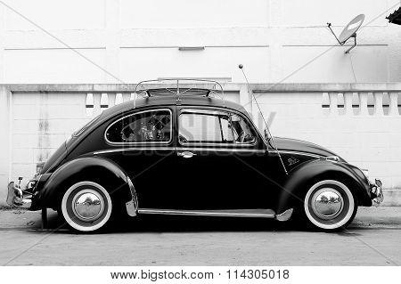 Volkswagen Beetles Vintage Style