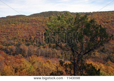 Devil'S Den State Park Overlook