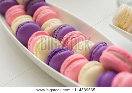 Tray with delicious cakes and macaroon. Elegant sweet table with big cake, cupcakes, cake pops on di