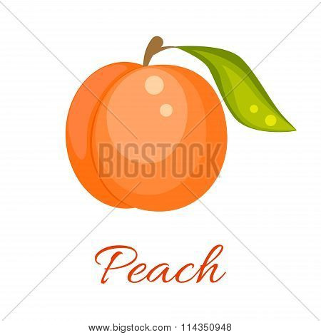 Orange peach vector icon.