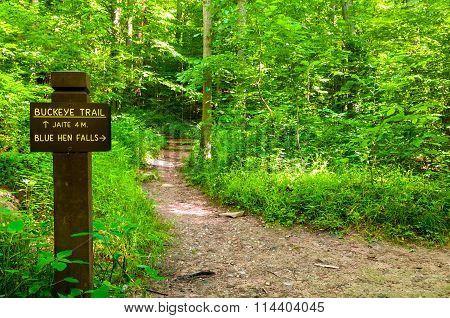 Buckeye Trail Marker