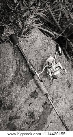 Sport fishing. Beautiful nature.