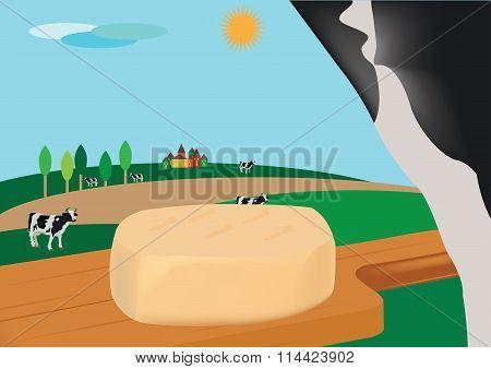 caciotta cheese on cutting board