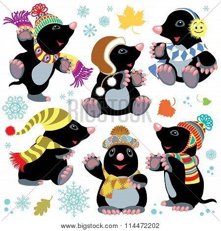 cartoon mole at winter