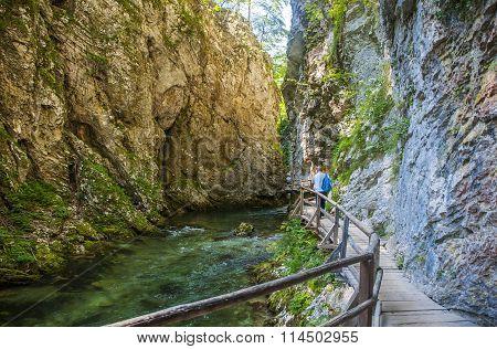 Bled gorge, Blejski vintgar, Slovenia