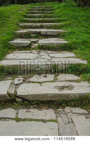 Flagstone Stairs In Grass