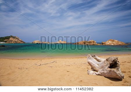 Beach With Trunk