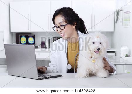 Veterinarian With A Dog Using Laptop In The Clinic