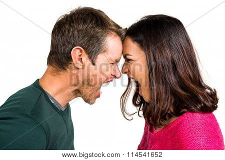 Couple yelling while standing head to head on white background
