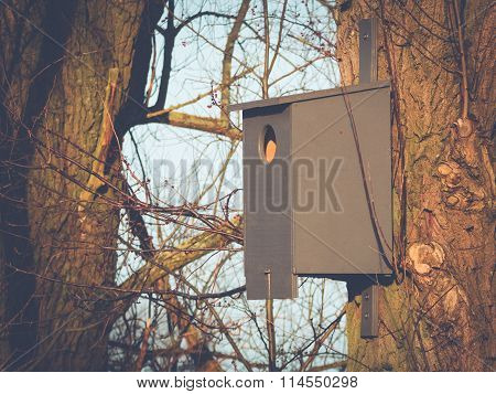 Birdhouse in the Morning Sun