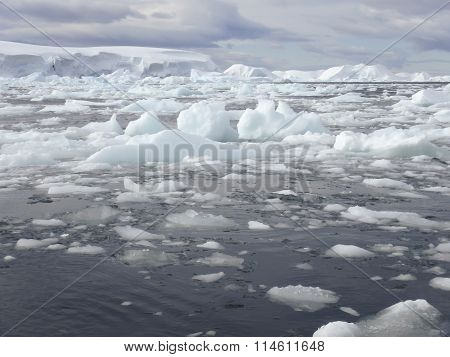 Ice Field, Antarctica