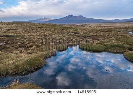 Nature Of Altiplano