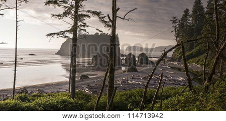 Ruby Beach Panoramic