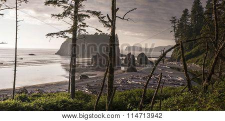 Ruby Beach Panoramic