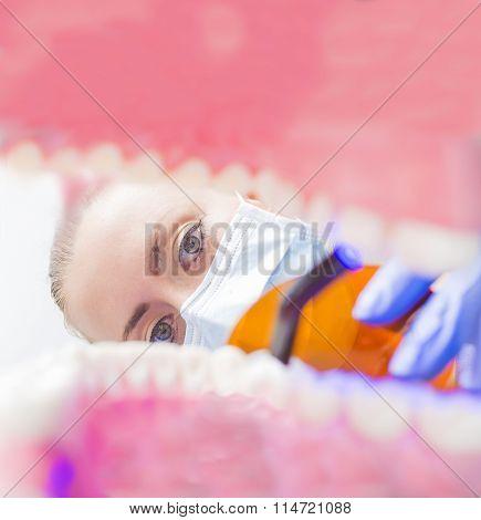 Dentist Observing