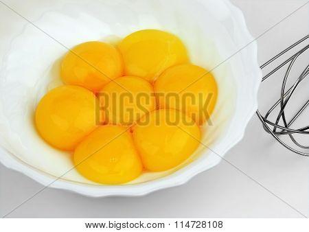 Yolks of eggs