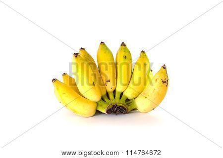 Fresh Whole Bananas. Isolated On White Background.