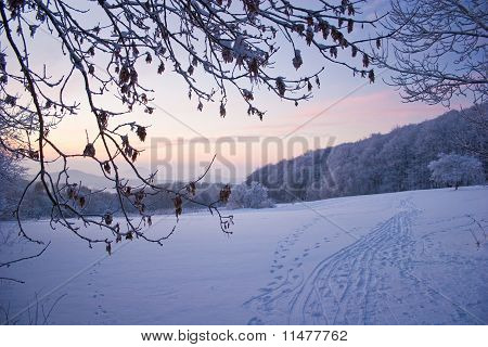 Winter in the german Habichtswald mountains