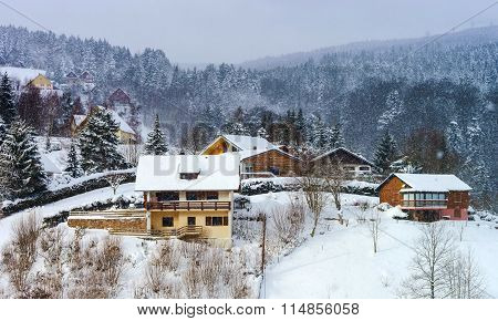 Beautiful of hill with winter trees in snow season and weater concept poster