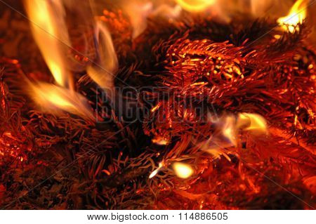 fir branches burning