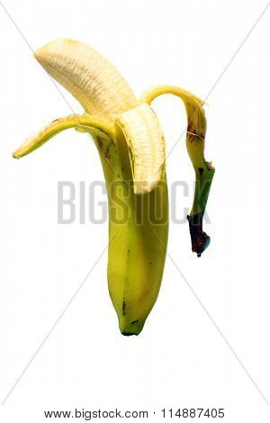 Banana isolated on white with room for your text. Bananas are an important part of any diet and are naturally sweet. Everyone loves bananas.