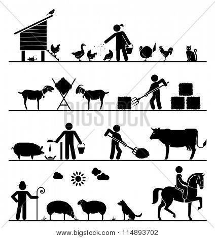 Agriculture icons. Feeding chickens and poultry, feeding goats with hay, feeding pigs and cattle, grazing sheep, riding horse.