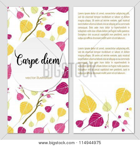 Botanical organic style broshure. Vector illustration Leaves. Stock Vector Illustration