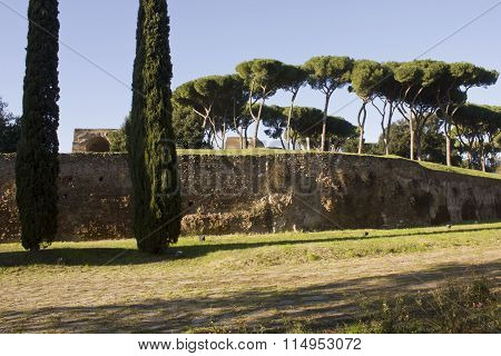 View Of Palatine Hill From Via Di San Gregorio