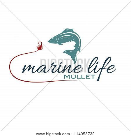 Illustration Marine Life With Mullet