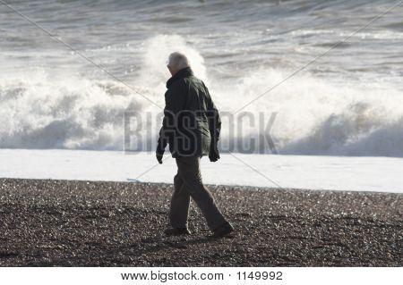 Shore Walker