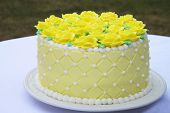 Yellow butter cream frosting handmade roses on a round cake frosted with light yellow icing and embossed with square pattern accented with white frosting dots and white boarder served in back yard poster