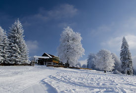 Beautiful Winter Landscape With Chalet