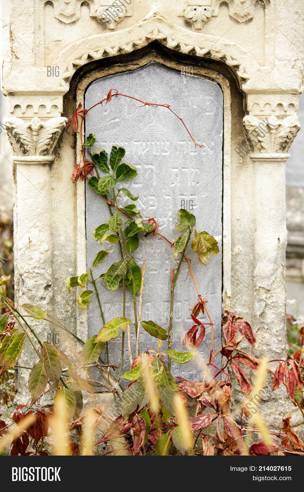 Old Jewish Cemetery Image Photo Free Trial Bigstock