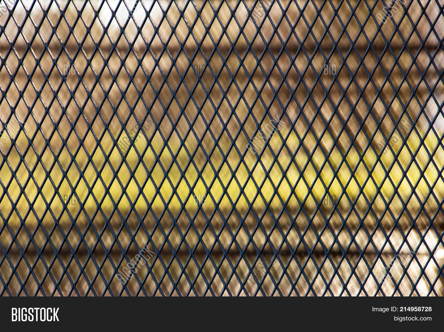 Steel Wire Mesh Fence Image & Photo (Free Trial)   Bigstock