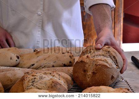 Baker holding fresh bread on bakery.
