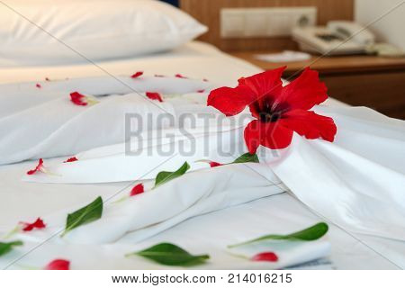 Decorated Hotel Bed. Romantic Flower Petal Arrangement On A Hotel Bed.