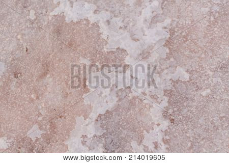 Brine and salt of a pink lake, colored by microalgae Dunaliella salina, famous for its antioxidant properties, enriching water by beta-carotene, used in medicine, dermatology and spa