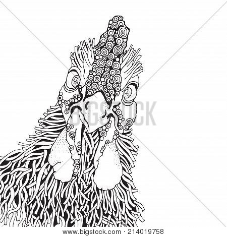 Hand-drawn Vector Rooster.